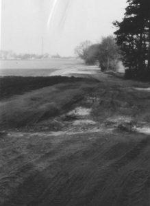 Im Suren Winkel, 1961